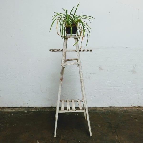 Witte smalle plantentafel