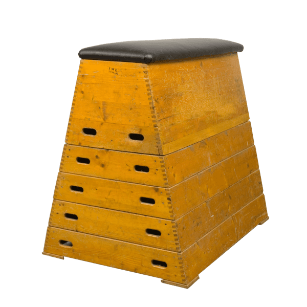 Vintage gymbok